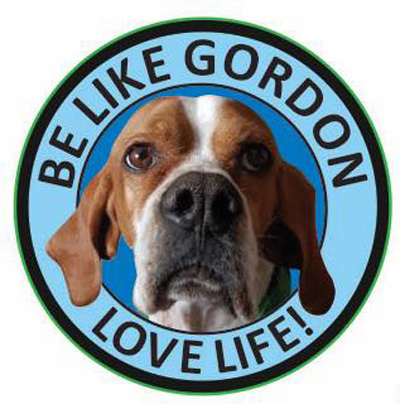 Gordon Pin Badge - Pointers In Need