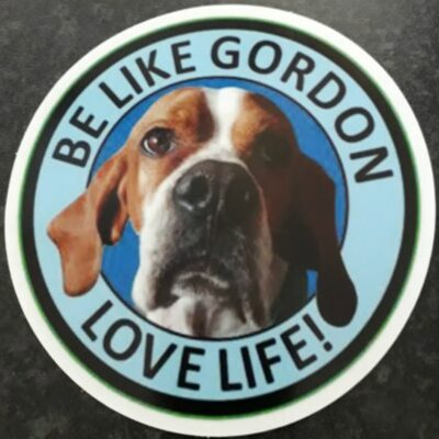 Gordon Car Sticker - Pointers In Need